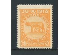 1919 - LOTTO/14882 - FIUME - 20+5c. PRO FONDAZIONE STUDIO - NUOVO
