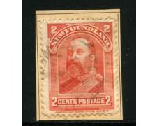 1897/901 - LOTTO/16571 - TERRANOVA - 2 Cent. ARANCIO - USATO