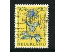 1960 - LOTTO/21297 - OLANDA - 30+10c. BENEFICENZA - USATO