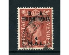 1951 - LOTTO/23688 - B.A. TRIPOLITANIA - 4 M. SU 2p. BRUNO - USATO