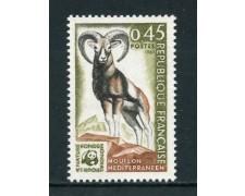 1969 - FRANCIA - ANNO EUROPEO DELLA NATURA - NUOVO - LOTTO/25981