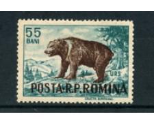 1956 - LOTTO/5080 - ROMANIA -  55 BANI ORSO - NUOVO