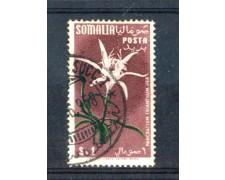 1955 - LOTTO/9853U - SOMALIA AFIS - 1 s. FIORI - USATO