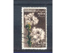 1955 - LOTTO/9854U - SOMALIA AFIS - 1,20  FIORI - USATO