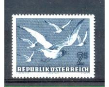 1950/53 - LOTTO/AUSA56L - AUSTRIA - POSTA AEREA  2s. GABBIANI