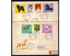 1967 - LBF/3364 - UNGHERIA -  CANI DI RAZZA