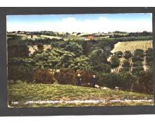 NUOVA ZELANDA - LOTTO/10475 - AUCKLAND STRAWBERRY GARDENS
