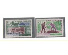 1969 - LBF/2646 - NUOVA CALEDONIA - ALLEVAMENTI  2v. NUOVI