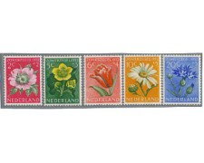 1952 - LOTTO/8737 - OLANDA - BENEFICENZA FIORI
