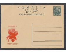1981 - LBF/2750 - SOMALIA - CARTOLINA POSTALE EUROFLORA