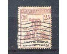 1924 - LOTTO/REGSS19U - REGNO - 25c. CASSA INF. LAVORO - USATO
