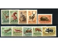 1953 - UNGHERIA  - ANIMALI SELVATICI - POSTA AEREA 10v. - NUOVI - LOTTO/30050